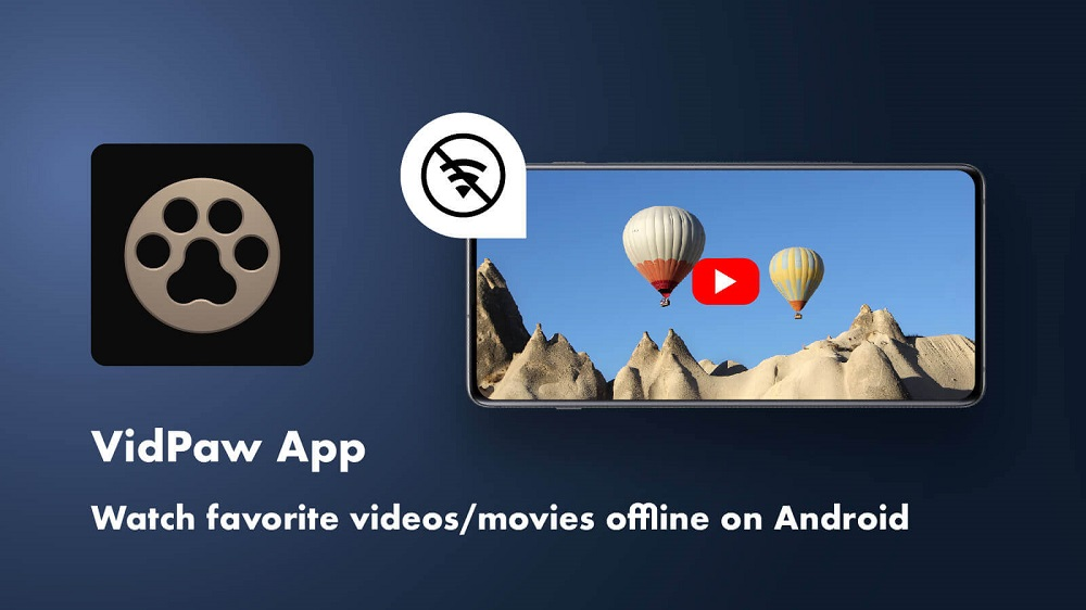 The Best YouTube Video to MP4 Converter App - VidPaw App