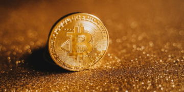 Reasons Why Bitcoin's Value Will Always Keep Growing 9